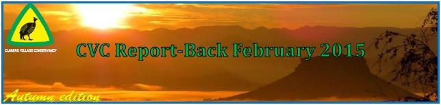 CVC report Feb header