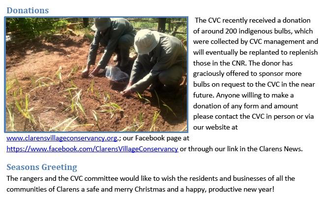 cvc report 7
