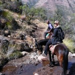 Tours from Clarens to Lesotho Pony trekking