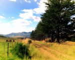 Self Drive: Clarens to Fouriesburg